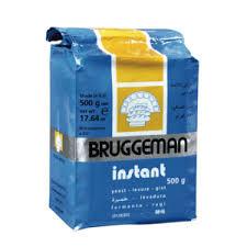 DROGE GIST BRUGGEMAN 500 GR